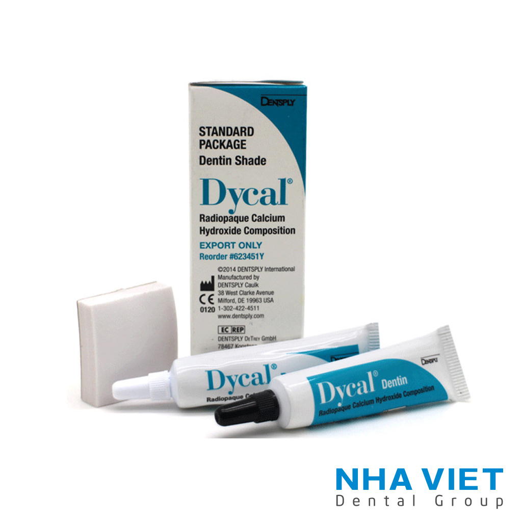 Che tuy Dycal - Dentsply