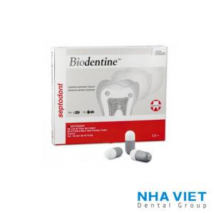 Vật liệu sinh học BioDentin Septodont
